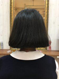 韓国タンバルモリカットの髪の量について